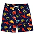 Funnycokid Boys Beach Board Shorts Quick Dry Kids Swim Trunks 3-10 Years
