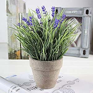 YOEDAF Artificial Plant in Pot, Plastic Fake Realistic Lavender Luo Hancao Flower for Indoor Outdoor Home Office Wedding Arrangement Decoration 70
