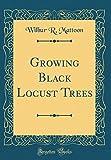 Amazon / Forgotten Books: Growing Black Locust Trees Classic Reprint (Wilbur R Mattoon)