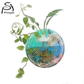 Planta de fondo coloreado para colgar en la pared burbujas acuario cuenco pecera decoración del hogar: Amazon.es: Productos para mascotas
