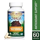 Host Defense – Chaga Mushroom Capsules, Antioxidant and DNA Support for Protection Against Free Radical Damage, Non-GMO, Vegan, Organic, 60 Count Review
