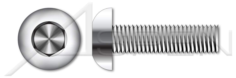 Button Head Hex Socket Cap Screws 30 pcs AISI 304 Stainless Steel 5//16-24 X 3-1//2 18-8