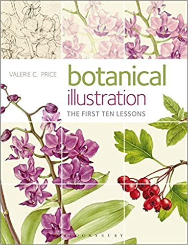 Botanical Illustration: The first ten lessons by Price, Valerie (2013)