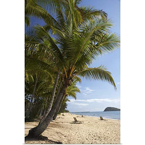 GREATBIGCANVAS Poster Print Entitled Palm Cove Beach by 12