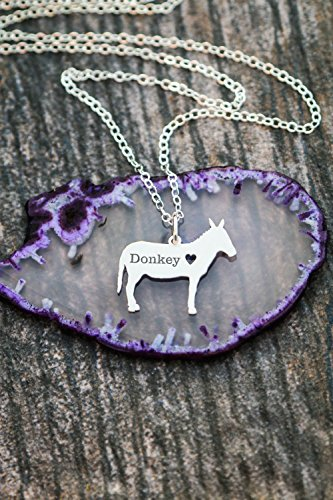 Donkey Necklace - IBD - Farm Animal Mom Gift Personalized Pet Engraved Name - Pendant Size Options - 935 Sterling Silver 14K Rose Gold Filled - Fast 1 Day Production