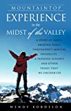Mountaintop Experience in the Midst of the Valley, Wendy Bordelon, 1615796878