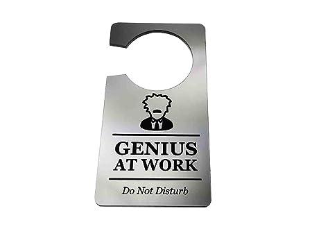 Origin Designed Letrero genérico para Puerta, diseño con Texto en inglés Genius At Work, Do Not Disturb, Color Plateado, Ideal para Regalo
