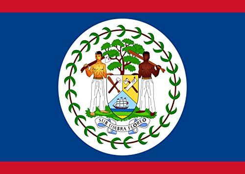 Toland Home Garden Country/National Flag of Belize 12.5 by 18