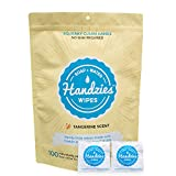 Handzies: Natural Soap and Water Hand Wipes, Individually Packaged, Free of Alcohol, Triclosan and Benzalkonium Chloride, Made with Pure Castile Soap and Essential Oils (100)