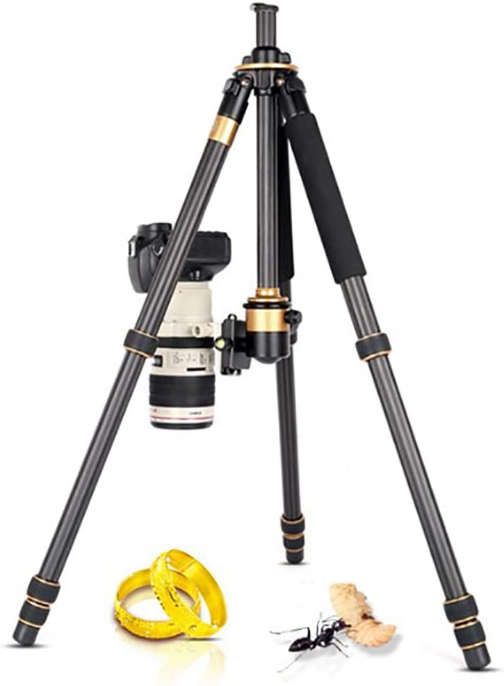 28-Tube Photography Panoramic Pan Tilt with 360 Degree Ball Head Carry Bag Zhengpin Portable Carbon Fiber Tripod