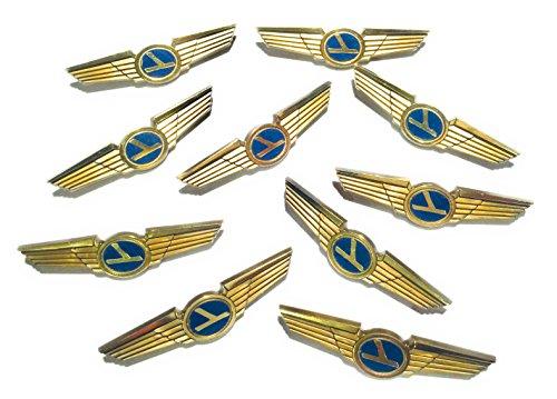 Aviator Kids Pilot Wings Plastic Pins Pinbacks Badges Lot of 10 Party Favor Pins
