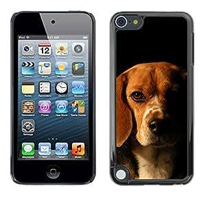 Paccase / SLIM PC / Aliminium Casa Carcasa Funda Case Cover - Beagle Labrador Retriever Dog Puppy - Apple iPod Touch 5