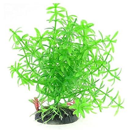 Amazon.com : eDealMax Planta de agua acuario Emulación/Grass, 5, 7, Verde : Pet Supplies