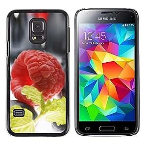 TopCaseStore / la caja del caucho duro de la cubierta de protección de la piel - Plant Nature Forrest Flower 60 - Samsung Galaxy S5 Mini, SM-G800, NOT S5 REGULAR!