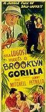 Bela Lugosi Meets a Brooklyn Gorilla POSTER Movie (1952) Style B 11 x 14 Inches - 28cm x 36cm (Bela Lugosi)(Duke Mitchell)(Sammy Petrillo)(Charlita)
