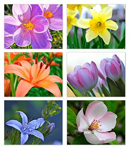 Spring Flowers Blank Note Cards - Greeting Cards with Envelopes - 6 Unique Designs - 5.5