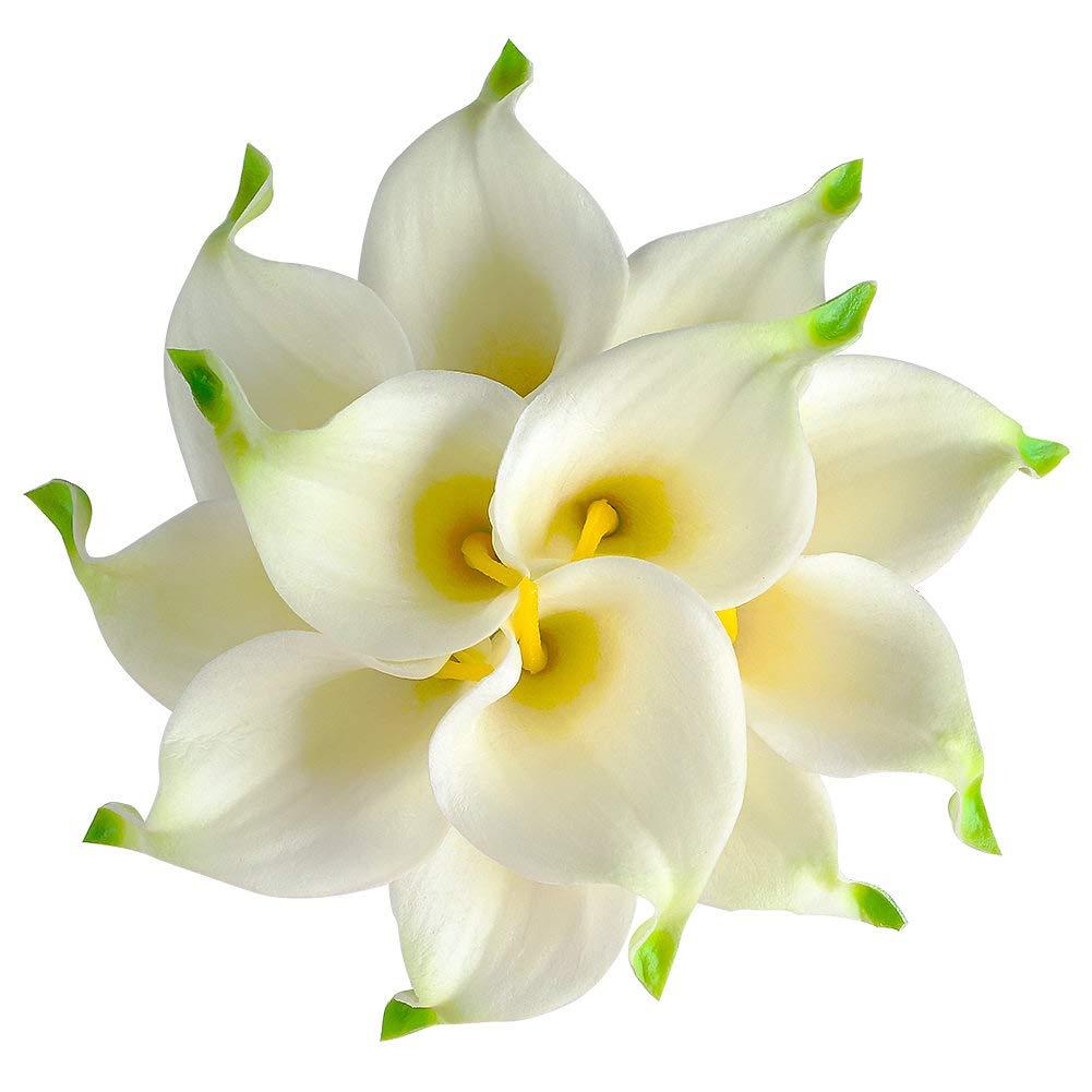 Unechte Blumen, Künstliche Deko Blumen Gefälschte Blumen Seiden Plastik Calla-Lilie Braut Hochzeits blumenstrauß für Haus Garten Party Blumenschmuck 12 Stück (Grün) Gemdragon
