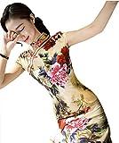 Elegant Cheongsam Women Silk Velvet Cheong-sam Top Chinese Qipao Dress Robe (XL)