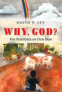 Why, God? His Purposes in Our Pain by David P. Ley