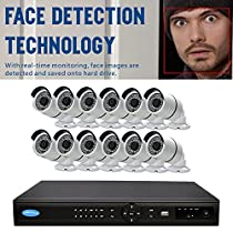 OWLTECH 16 Channel Face Detection 5MP NVR with preinstall 4TB HDD - 12 x 4MP 3.6mm IP Bullet Camera with Built in Microphone plus 100ft Cable and Accessories