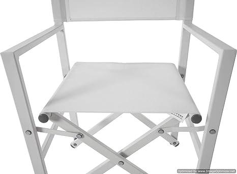 Amazon.com: HomeRoots Studio Silla plegable de aluminio para ...