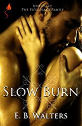 Slow Burn (Contemporary) (The Fitzgerald Family Book 1)