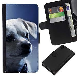 Chihuahua Puppy Serious Face Dog - la tarjeta de Crédito Slots PU Funda de cuero Monedero caso cubierta de piel Sony Xperia Z3 D6603