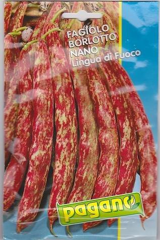 Fagiolo Borlotto NanoLingua di Fuoco Bean Seeds-40 ()