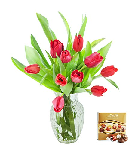 KaBloom Valentine's Day Special: 10 Red Tulips Fresh from Holland with Vase