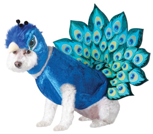 Animal Planet Peacock Dog Costume, X-Small, Multicolor (Frenchie Costumes)