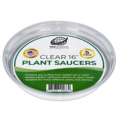 - YOUniversal Products Clear Plant Saucers - 5 Pack of 16 Inch - Excellent For Indoor & Outdoor Plants