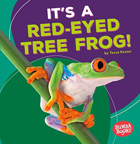It's a Red-Eyed Tree Frog! (Bumba Books - Rain Forest Animals) (Tree Rainforest Frogs)