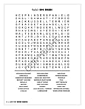 Safety Magnets 25 Pack: Large Print Word Search