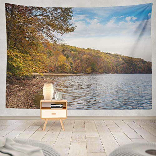 Deronge Tapestry Wall Hanging Autumn Color Road Trip Beautiful Blue Tapestry Wall Art Decor 60x80 Inch Wall Tapestry for Men Bedroom Home Decor Decorative Tapestry Dorm (Best Day Trips From Baltimore)