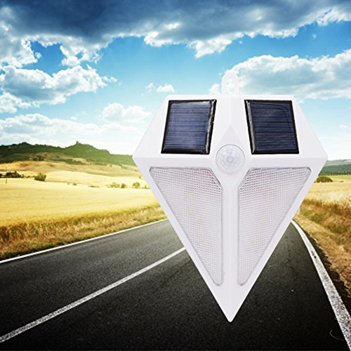 Solar Garden Lamp Buyer - 3