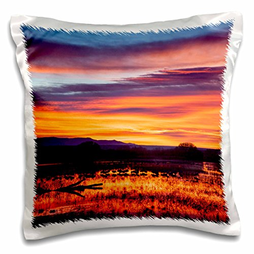 nt - Sunrise - Socorro County, New Mexico. Sunrise on waterfowl roosting - 16x16 inch Pillow Case (pc_231282_1) (Socorro Throw)