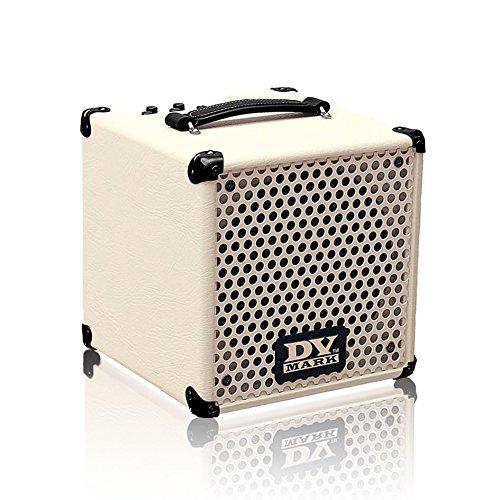DV Mark Little Jazz Guitar Combo Amp (Best Small Jazz Amp)