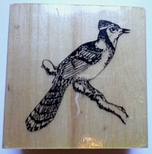 Anita's Blue Jay Bird On A Branch Wooden Rubber Stamp