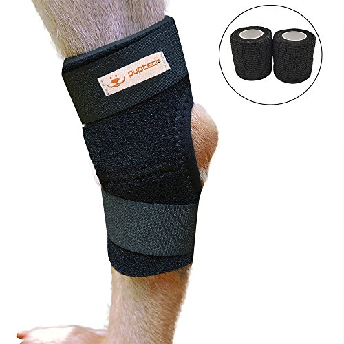 Brace Canine Joint Protection Bandage