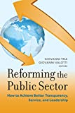 Reforming the Public Sector 1st Edition
