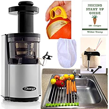 Amazon.com: Omega vSJ843RS Pack3 vert Slow Juicer Silver version, Plus Accessory Pack Folding ...