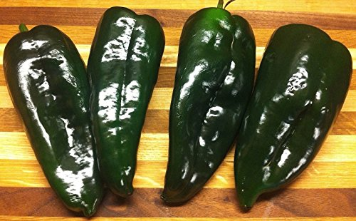 Ancho Poblano (30 seeds) The Heirloom Mild TexMex Pepper!!!