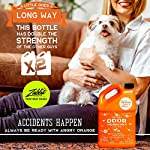 ANGRY ORANGE Ready-to-Use Citrus Pet Odor Eliminator Pet Spray - Urine Remover and Carpet Deodorizer for Dogs and Cats 7