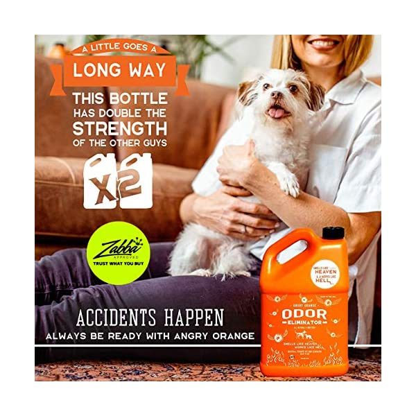 ANGRY ORANGE Ready-to-Use Citrus Pet Odor Eliminator Pet Spray - Urine Remover and Carpet Deodorizer for Dogs and Cats 2