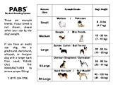 PABS for Pets System the Ultimate Chastity Belt for Dogs, X-Large