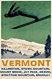 """KILLINGTON STOWE MOUNTAIN MOUNT SNOW JAY PEAK VERMONT USA US SKIING SKI JUMPING DOWNHILL WINTER SPORT 16"""" X 24"""" MATTE PAPER VINTAGE POSTER REPRO WE HAVE OTHER SIZES offers"""