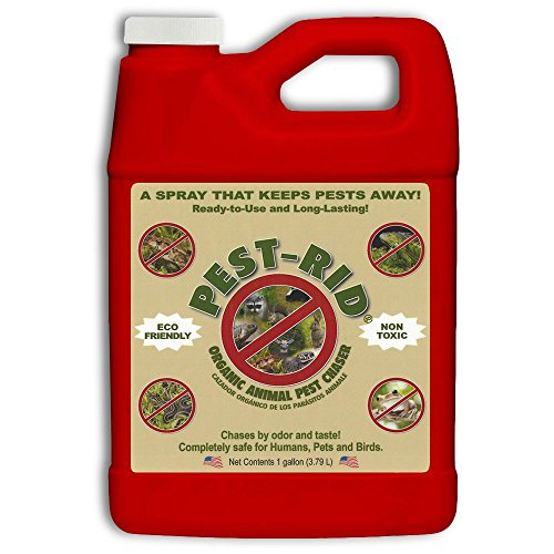Pest Rid Ready to Use Pest Control Refill Pack, 1-Gallon -  Iguana Rid, PR2002G