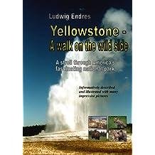 Yellowstone -- A walk on the wild side - English (English Edition)