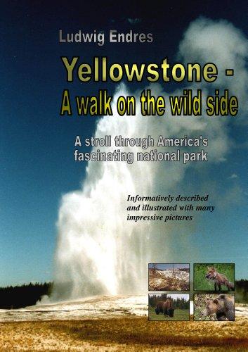 Geyser Diamond - Yellowstone -- A walk on the wild side - English
