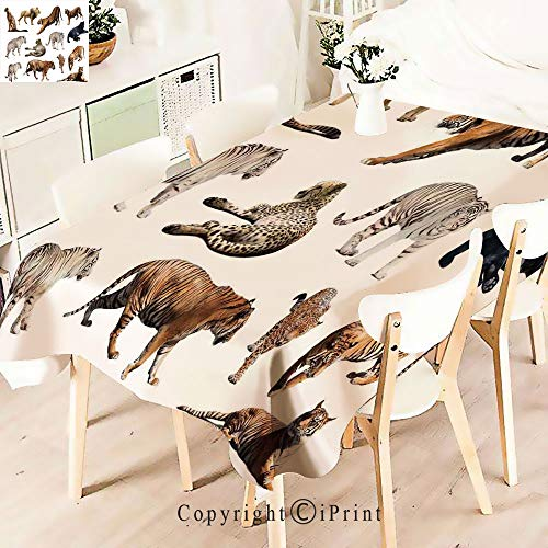 Polyester Custom Tablecloth,of Tigersand Other Big Wild Cats for Buffet Table, Parties, Holiday Dinner, Wedding & More, ()